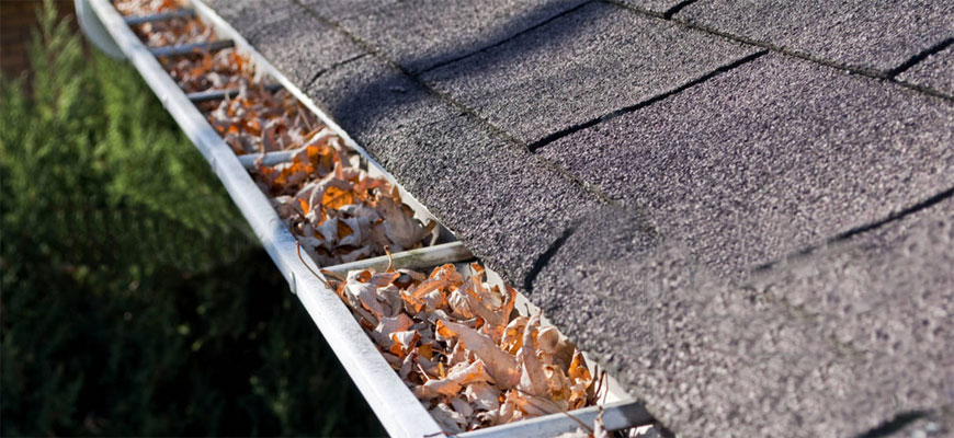 Gutter Cleaning Reduces Basement Seepage in Long Island