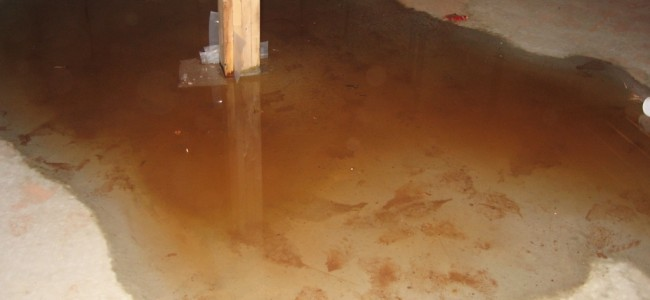 5 Signs You May Have A Leaky Basement in Long Island