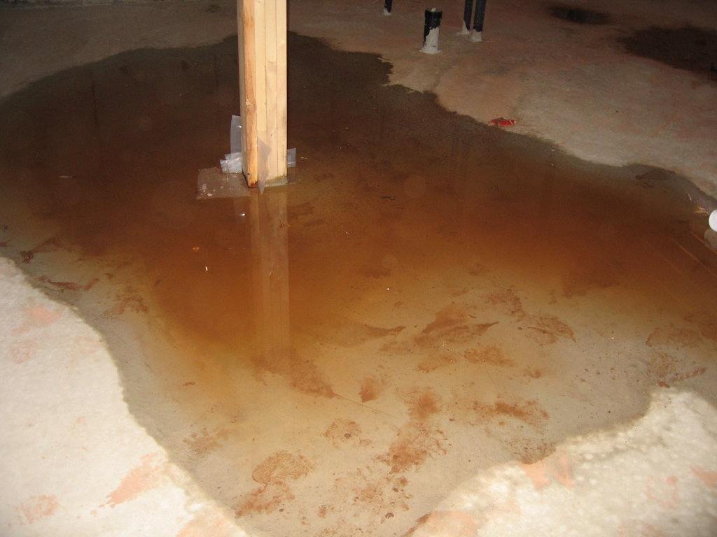 signs you may have a leaky basement in long island