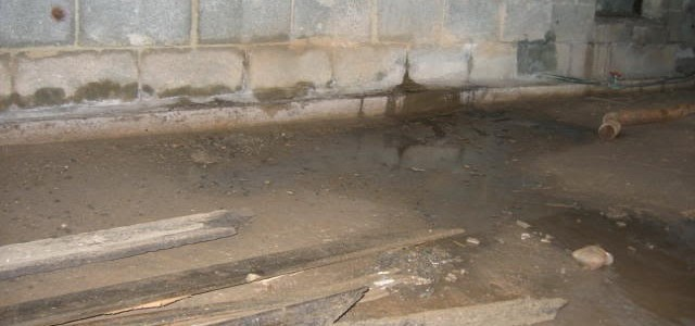 Signs of Crawl Space Leaking to Look Out For
