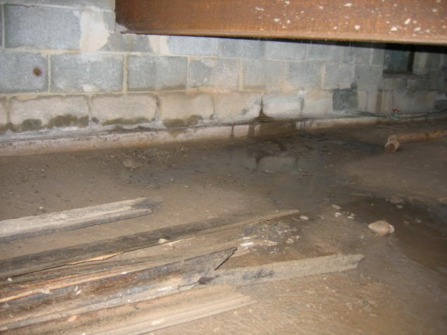 Signs Of Crawl Space Leaking To Look Out For Am Shield