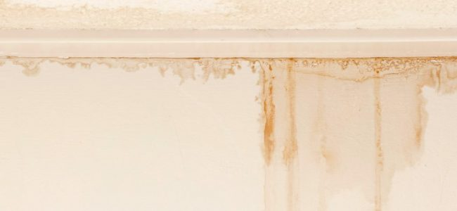 Quick Guide on Comprehensive Foundation Waterproofing Kings County, NY